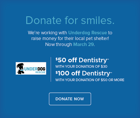 Knollwood  Dentistry - Underdog Rescue
